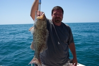 Catching grouper on fat cat fishing charters